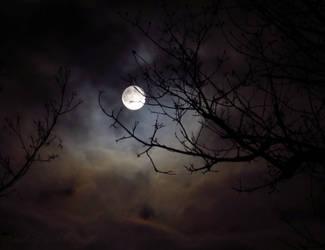Neverending Moon by fairyfrog
