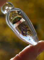 Scrapperflap Specimen Ampoule by fairyfrog