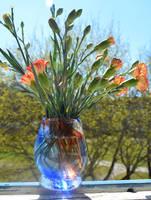 Furnace blown glass vase