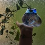 Balance by fairyfrog