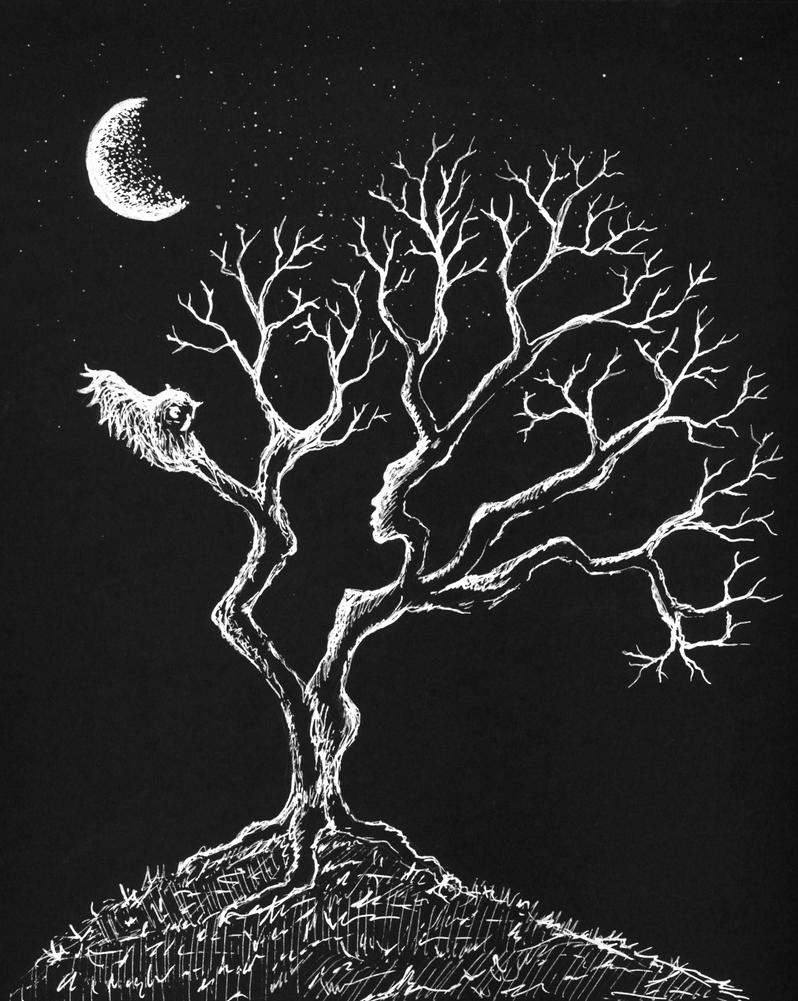 Night of the Half Moon by lizjane