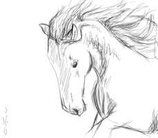 Horse Head Sketch 2 by 0-no-0