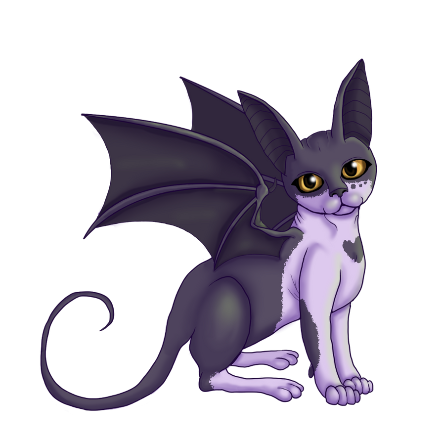 Bat Cat by High-Low