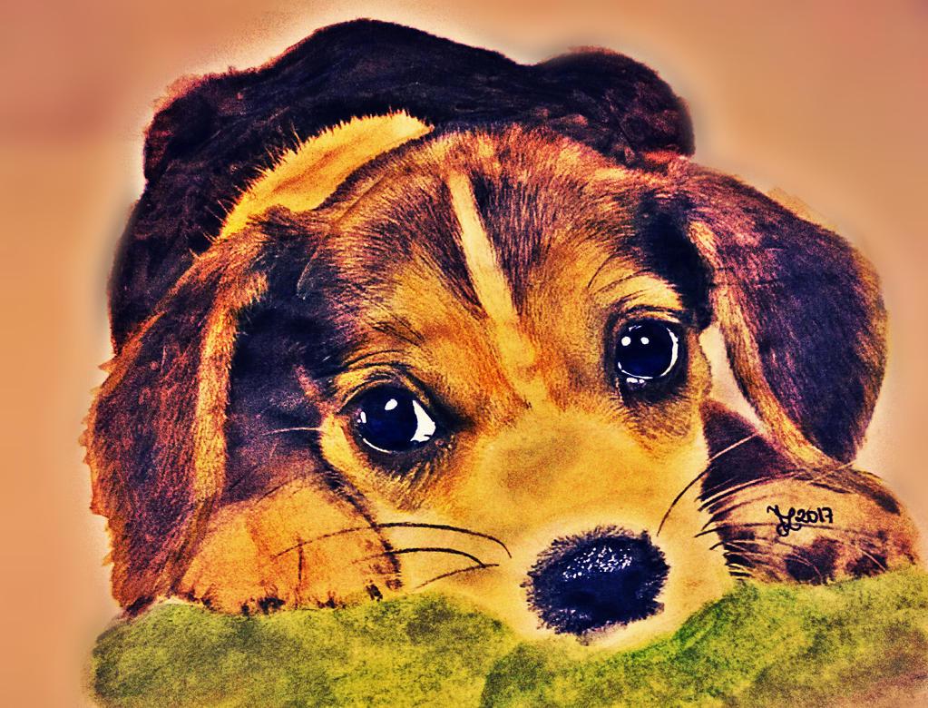 Puppy by roseblood1313
