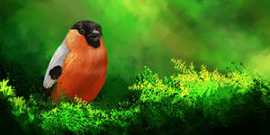 Just another bird
