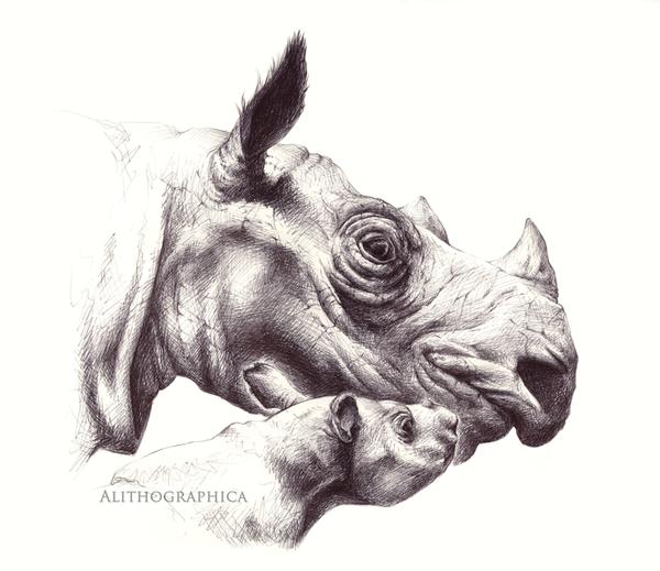 Sumatran Rhino by Alithographica
