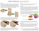 Science Fact Friday: Bird Tongues