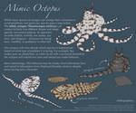 Science Fact Friday: Mimic Octopus