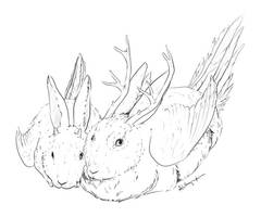 Beyond the Pale RPG: Wolpertinger by Alithographica