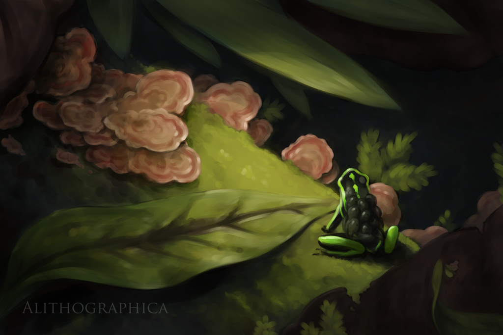 Three-striped Poison Frog by Alithographica