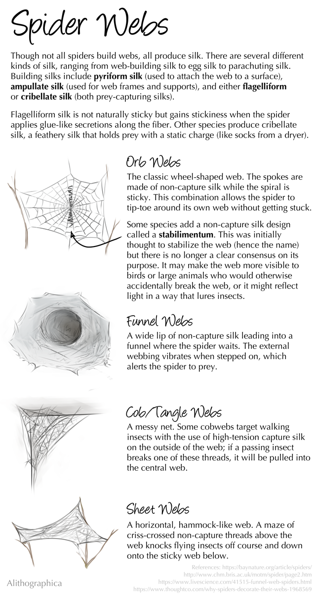 Science Fact Friday: Spider Webs by Alithographica on DeviantArt