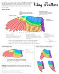 Science Fact Friday: Wing Feathers