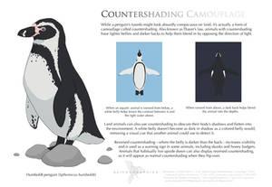 Science Fact Friday: Countershading