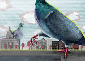 pigeons take over