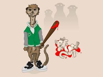 Kitty vs. Meerkat