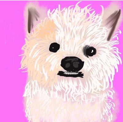 My dog by amanda007mckenna