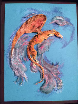 Aka-Bekko Dragon