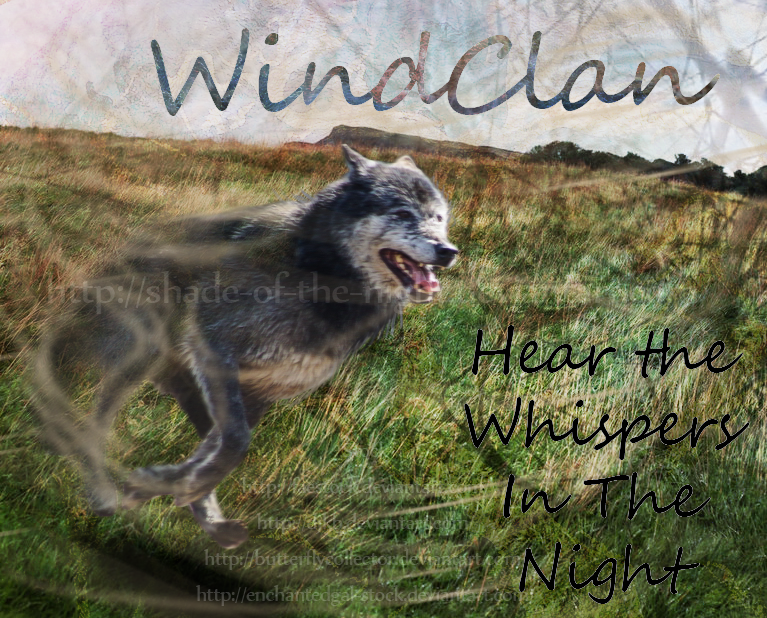 HTML Pages- Graphics Needed! Wind_clan_by_shade_of_the_night-d549lf1
