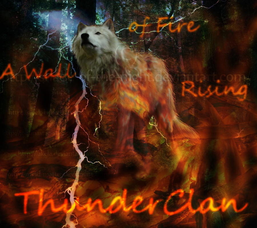 HTML Pages- Graphics Needed! Thunder_clan_by_shade_of_the_night-d54e3lg