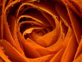 Orange Juice. by DafoeofLenin