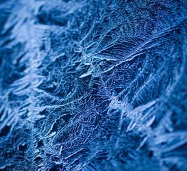 Icy Web. by DafoeofLenin
