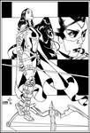 Huntress, Unmasked By Drew Edward Johnson