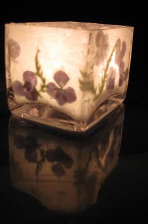 Hydrangea  Fern Luminary by crowfaery
