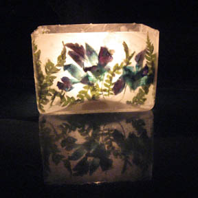 Dendrobium Orchid Luminary by crowfaery