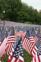 2013 Memorial Day Flag Garden in Boston by Xqu