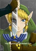 +Zelda - Twilight Princess+ by tigerangel