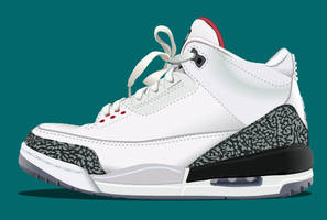AIR JORDAN 3 by KLRbee
