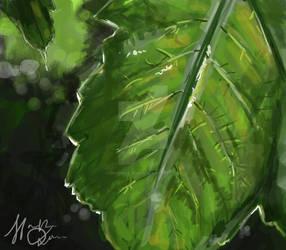 Concept Art Leaf