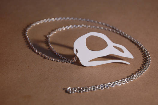 crow skull necklace.