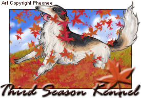 FP: Autumn Borzoi Tag by hawberries