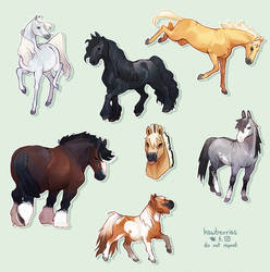 thinking about horses 24/7