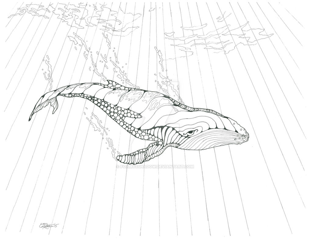 Animals And Organic Shapes Coloring Book Whale By FoamysShadow