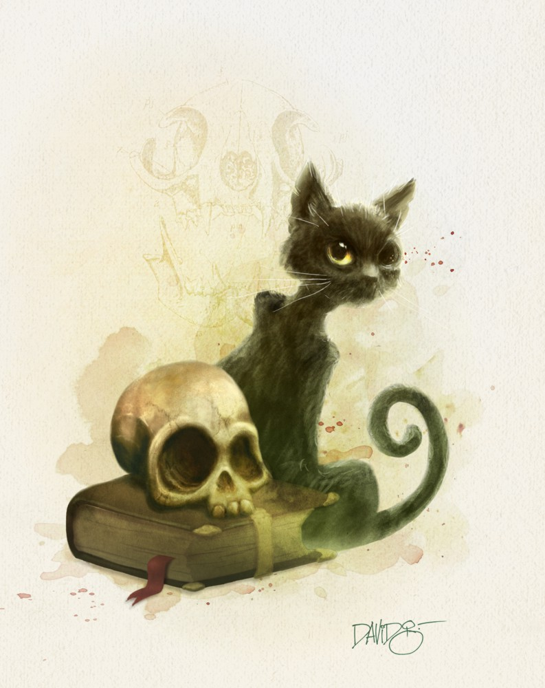 The Black Cat by Disezno