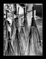 broom sketch by chinlop