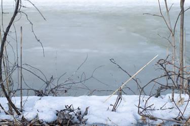 Frozen by lolnyny