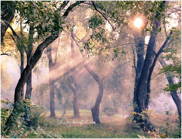 Smoked sunrays by LiiQa
