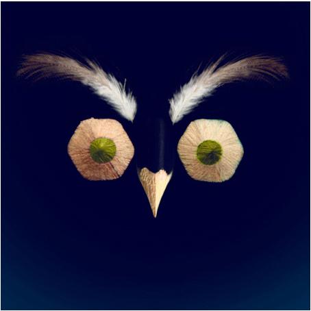 o.Owl by LiiQa