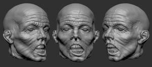 Severed Zombie Head by screenlicker