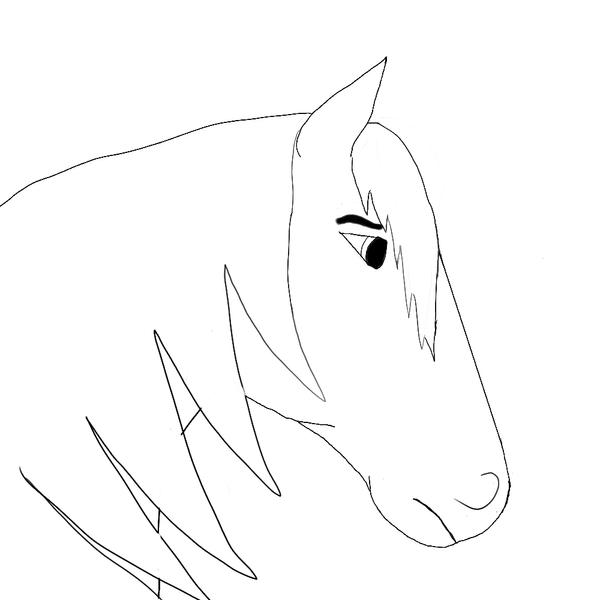 Line Drawing Head : Horse head line drawing