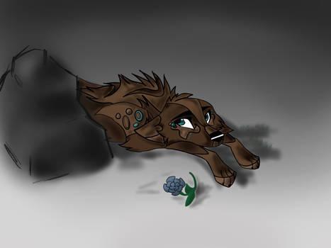 Chaiiwolfe