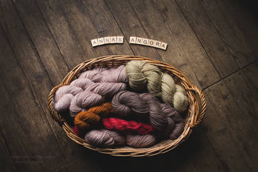 Hand Dyed Yarn In A Basket