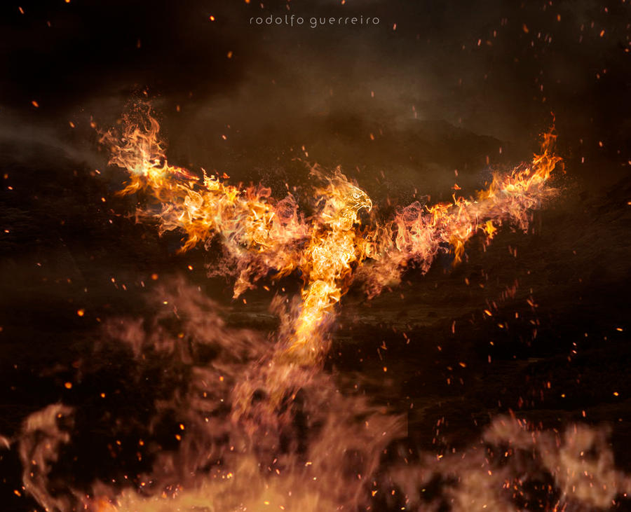 Phoenix by rodolfoguerreiro