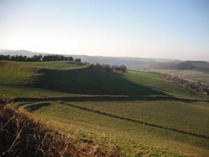 Coed Tyn-y-cwm ancient settlement
