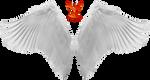Wings 1 by PhoenixRisingStock