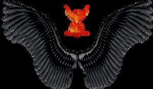 Wings 9