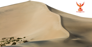 Desert Sands 3
